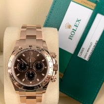 Rolex Daytona Rose gold 40mm Brown No numerals