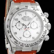 Rolex Daytona 116519 usados
