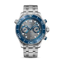 Omega Seamaster Diver 300 M Grijs Geen cijfers