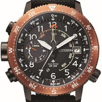 Citizen new Promaster Land