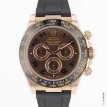 Rolex Daytona Rose gold 40mm Brown Arabic numerals