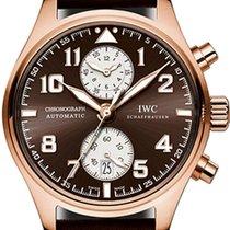 IWC Pilot Chronograph Oro rosa 43mm Marrón Arábigos