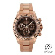 Rolex 116505 Or rose 2015 Daytona 40mm occasion