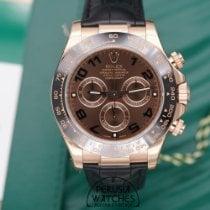 Rolex Daytona 116515ln 2016 neu