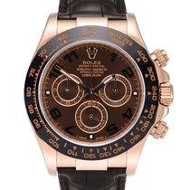 Rolex Daytona Złoto różowe 40mm Brązowy Arabskie