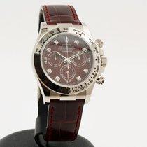 Rolex Daytona Oro blanco 40mm Rojo Sin cifras