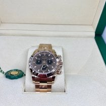 Rolex Daytona Rolex daytona 116505 Novo Ouro rosa 40mm Automático
