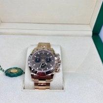Rolex Daytona Oro rosa 40mm Marrón Sin cifras
