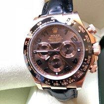 Rolex Oro rosa Automático Marrón 40mm usados Daytona