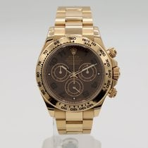 Rolex Daytona Rose gold 40mm Brown No numerals United States of America, California, Santa Monica
