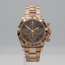 Rolex Daytona Rose gold 40mm Brown No numerals United States of America, California, Santa Monica