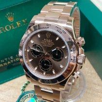 Rolex Daytona Rose gold 40mm Brown No numerals United Kingdom, Wilmslow