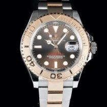 Rolex Yacht-Master 40 Gold/Steel 40mm Brown No numerals South Africa, Pretoria