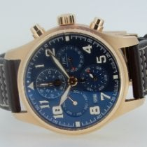 IWC Red gold 43mm Automatic IW392202 new