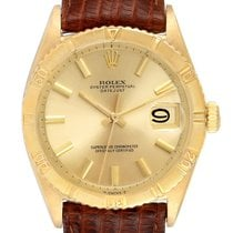 Rolex Yellow gold Automatic Champagne 34mm pre-owned Datejust Turn-O-Graph