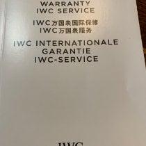 IWC Ingenieur Chronograph Сталь 45mm Cеребро Без цифр