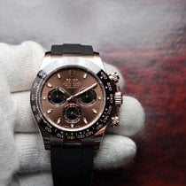Rolex Daytona Rose gold 40mm Brown No numerals United States of America, Florida, Orlando