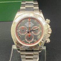 Rolex 116509 Or blanc 2005 Daytona 40mm occasion