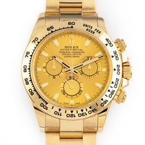 Rolex Daytona Yellow gold 40mm Gold No numerals United States of America, Florida, Hollywood