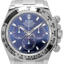 Rolex Daytona White gold 40mm Blue Arabic numerals United States of America, Florida, Hollywood