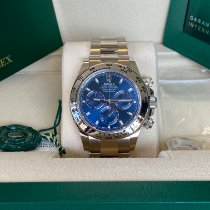 Rolex Daytona Or blanc 40mm Bleu Arabes