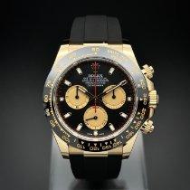 Rolex Daytona Gelbgold 40mm Schwarz Keine Ziffern