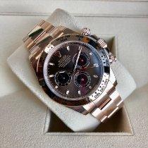 Rolex 116505-0013 Or rose 2021 Daytona 40mm nouveau