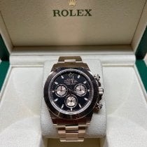 Rolex 116505 Rose gold 2019 Daytona 40mm pre-owned United States of America, Florida, West Palm Beach