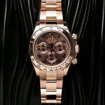 Rolex Oro rosa 40mm Automático 116505 usados
