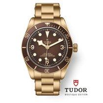 Tudor Bronze Automatic M79012M-0001 new