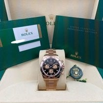 Rolex Daytona 116505 Unworn Rose gold 40mm Automatic United States of America, New York, New York