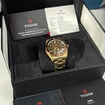 Tudor Bronze 39mm Automatic Bronze boutique edition pre-owned Thailand, nonthaburi