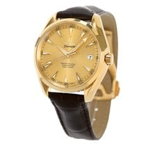 Omega Seamaster Aqua Terra Yellow gold 48.5mm Gold