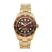 Tudor Bronze Automatic Brown Arabic numerals 39mm Black Bay Fifty-Eight