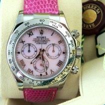 Rolex Daytona Weißgold 40mm Pink
