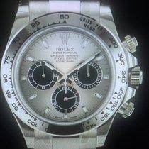 Rolex Daytona Witgoud 40mm Zilver Geen cijfers