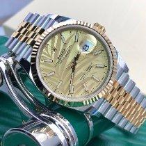 Rolex Gold/Stahl 36mm Automatik 126233 neu