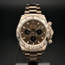 Rolex Daytona Złoto różowe 40mm Brązowy Bez cyfr