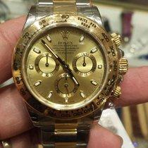 勞力士 (Rolex) NEW-全新 Cosmograph Daytona 116503 Champagne Dial Watch