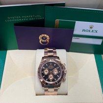 Rolex Daytona 116505 2020 nuevo