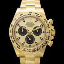 Rolex Daytona Yellow gold 40.00mm Champagne United States of America, California, San Mateo