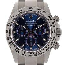 Rolex DAYTONA ORO BIANCO BLUE DIAL