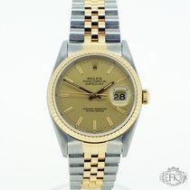 Rolex Datejust (Submodel) begagnad 36mm Guld/Stål