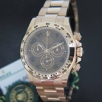 Rolex Daytona Everose NEW 116505