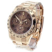 Rolex Chronograph 40mm Automatic 2014 pre-owned Daytona Brown