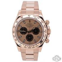 Rolex Daytona Rose Gold | 116505 Pink Dial | Pink Gold 2014