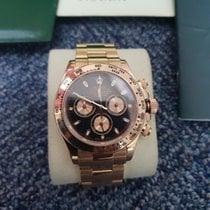 Rolex 116505 Rose gold Daytona