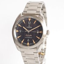 Omega Seamaster Railmaster Steel 40mm Black Arabic numerals
