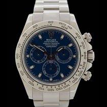 Rolex Daytona - Ref.: 116509 - Weissgold - Seltenes Zifferblat...