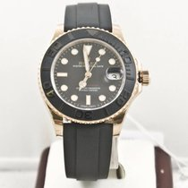 Rolex Yacht-Master 37 Rose gold 37mm Black No numerals United States of America, Florida, Miami